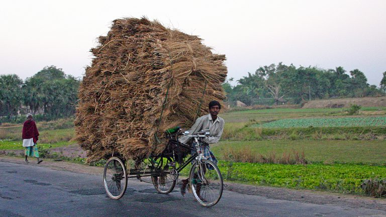 Indiase fietser stro hooi calcutta