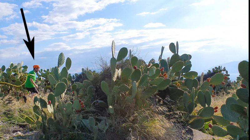 Eric zoekt zijn drone Mavic Air in een cactusveld in Nafplion Griekenland