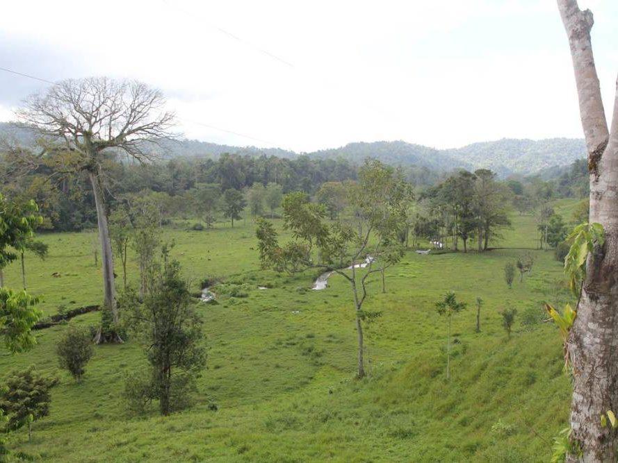 Uitzicht over graslandschap op Costa Rica
