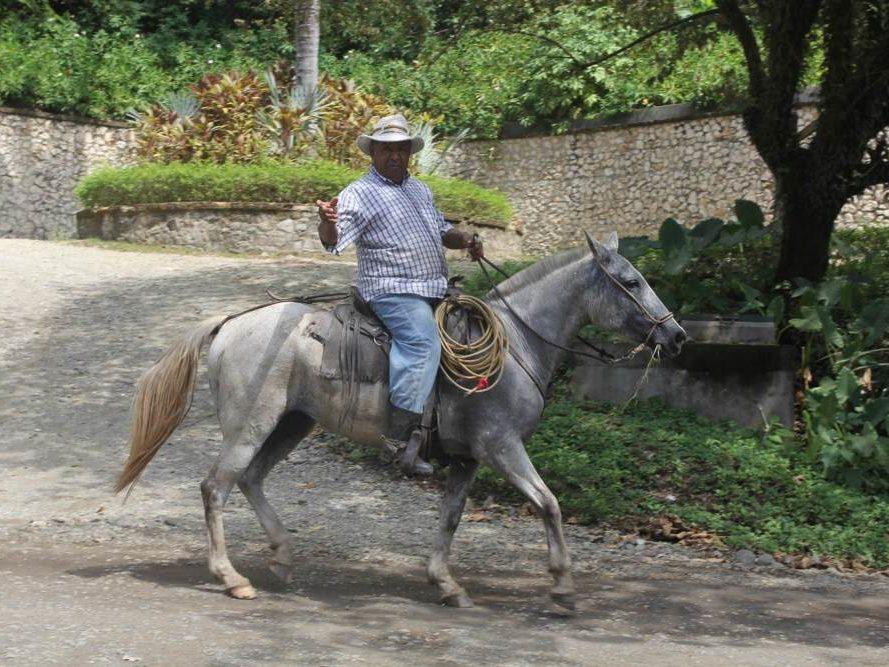 Man op paard op Costa Rica