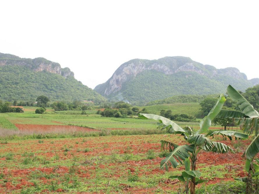 Bergen en velden met gewassen op Cuba