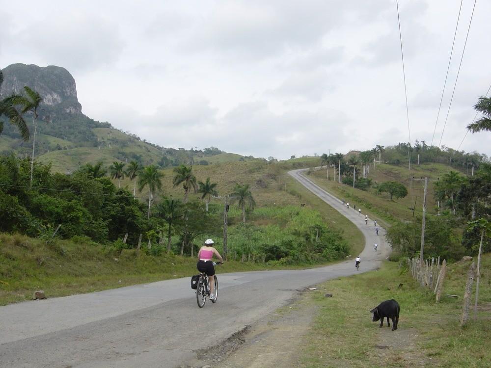 Fietsers op asfaltweg in de natuur van Cuba