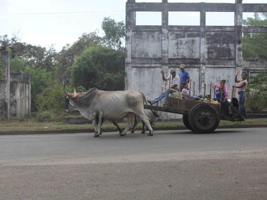 Ossen met wagen en zwaaiende mensen in Nicaragua